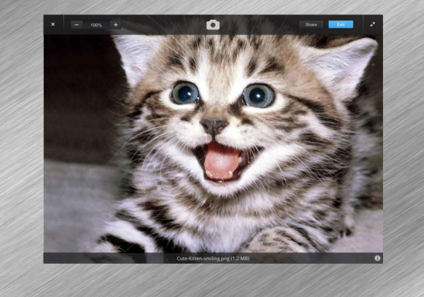 elementary_os___photo_viewer_mockup_by_kevkevfuuuuu-d6ofgbp