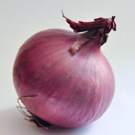 Installation et utilisation de Tor