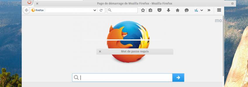 Quand Firefox perd sa superbe robe